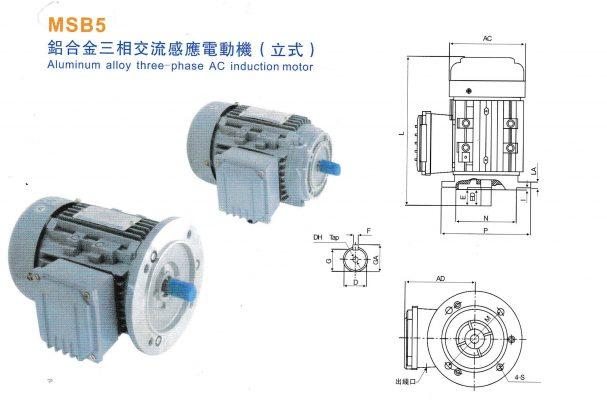 cấu tạo motor điện 3 pha MSB5